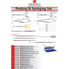 Probing & Syringing Set